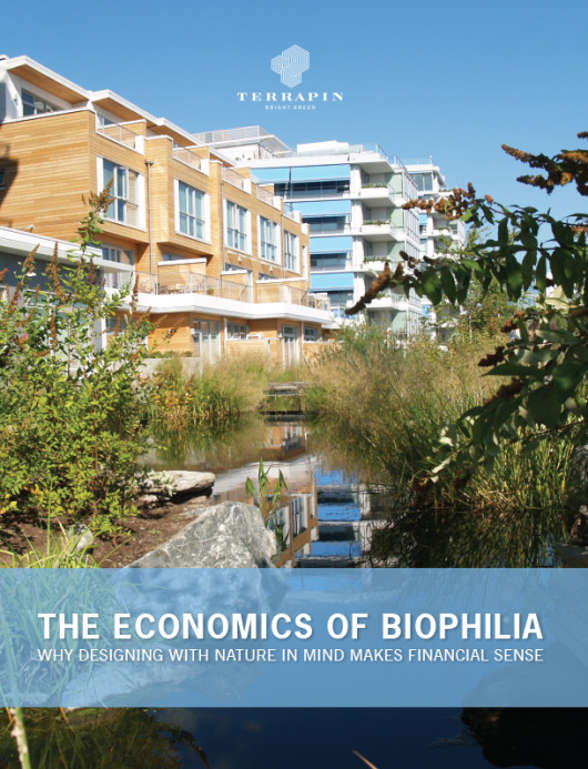 Cover of The Economics of Biophilia