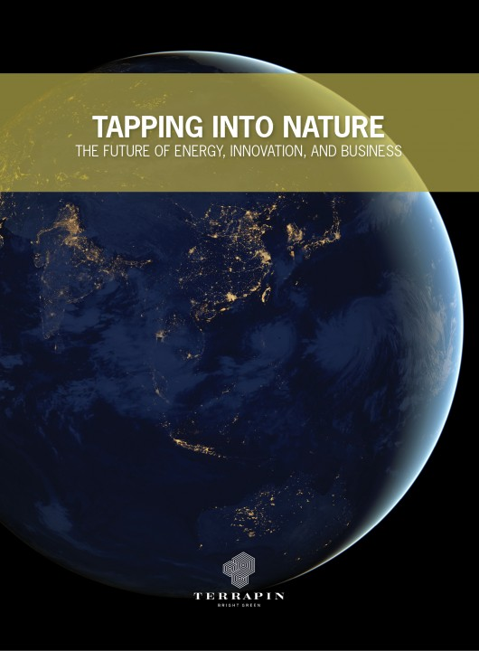Cover of Tapping into Nature