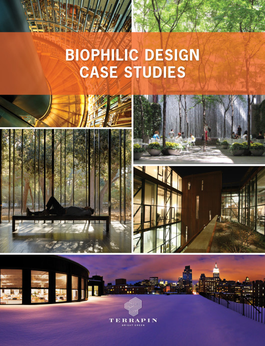 Biophilic Design Case Studies by Terrapin
