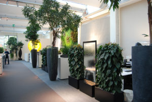 Water walls in the ArtAqua office incorporate Presence of Water biophilic design pattern